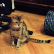 tosya-majorcats-1